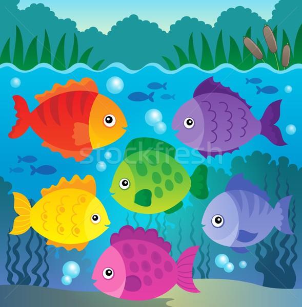 Stock fotó: Stilizált · halfajok · kép · hal · állatok · buborékok