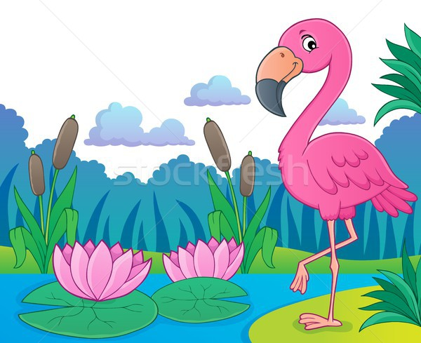 Flamingo topic image 5 Stock photo © clairev