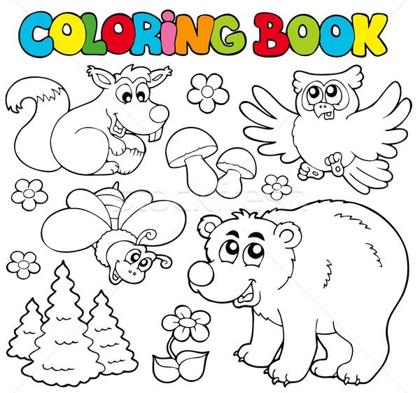 Boyama Kitabi Orman Hayvanlar Sanat Egitim Kus
