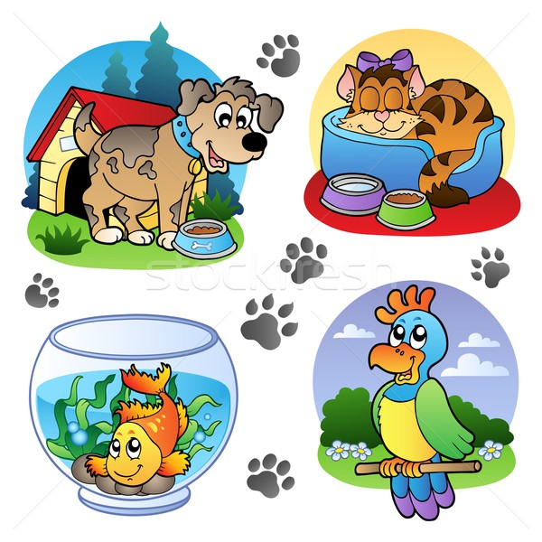Various pets images 1 Stock photo © clairev