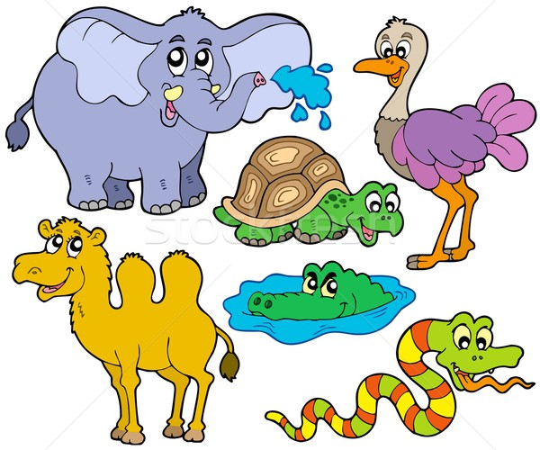 Tropical animals collection Stock photo © clairev