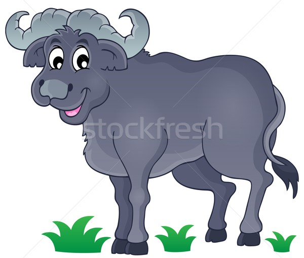 African bull image 1 Stock photo © clairev