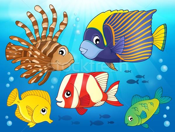 Korallzátony hal kép természet óceán állatok Stock fotó © clairev