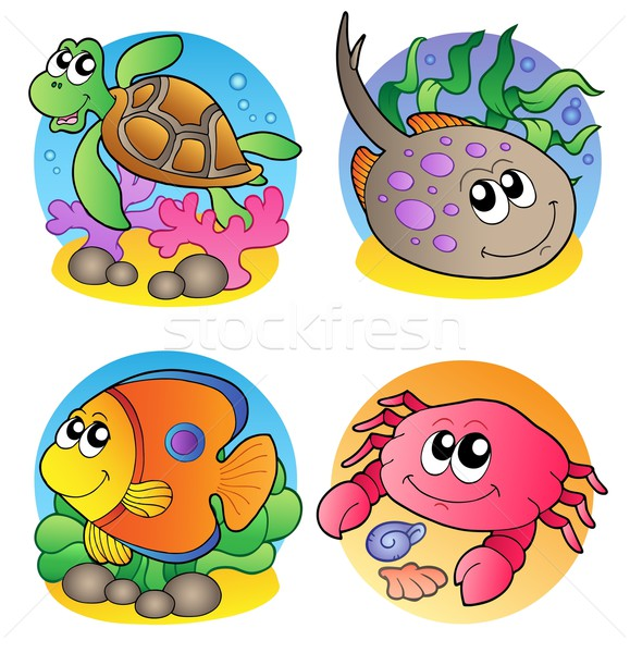 Various marine animals images 1 Stock photo © clairev
