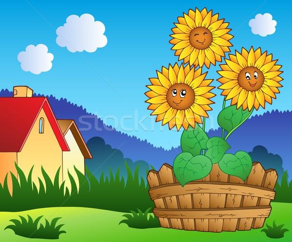 ストックフォト: 草原 · 3 · かわいい · ひまわり · 庭園 · 芸術