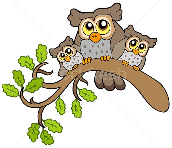 Három aranyos baglyok ág fa erdő Stock fotó © clairev