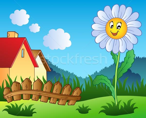 Stockfoto: Weide · daisy · bloem · natuur · blad · tuin