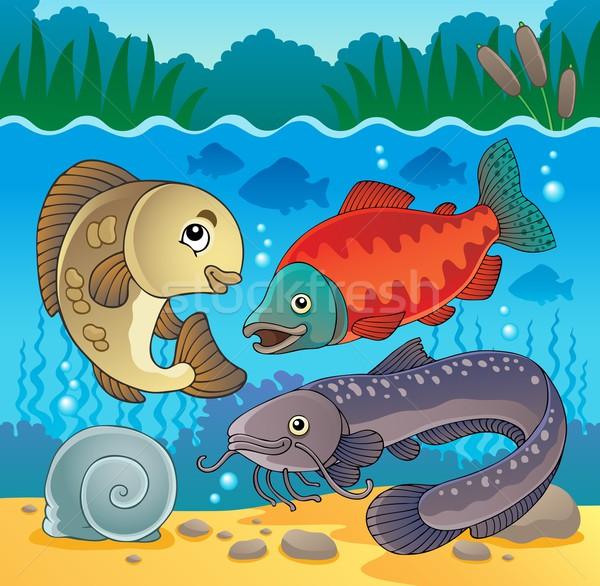 Freshwater fish theme image 5 Stock photo © clairev