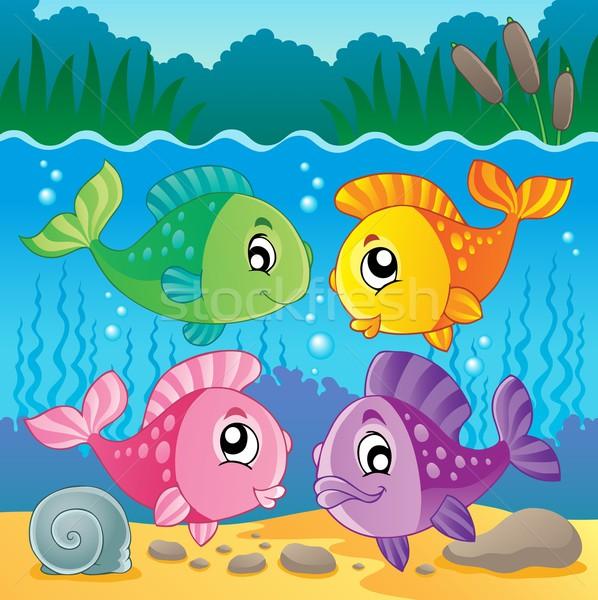 Zdjęcia stock: Słodkowodnych · ryb · obraz · charakter · projektu · rock
