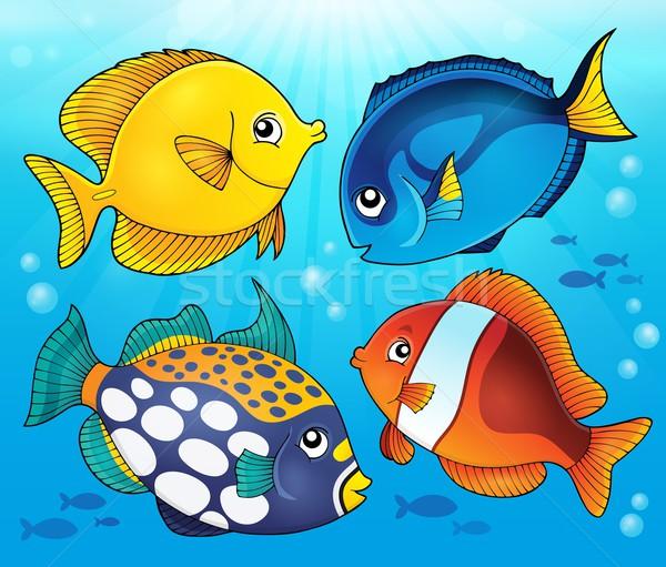 Korallzátony hal kép természet fény művészet Stock fotó © clairev