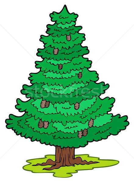 Rajz tűlevelű fa erdő fák művészet Stock fotó © clairev