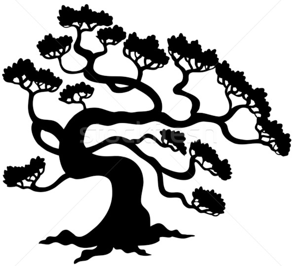 çam ağacı siluet ağaç doğa sanat beyaz Stok fotoğraf © clairev
