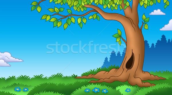 Arbre herbeux paysage couleur illustration fleur Photo stock © clairev