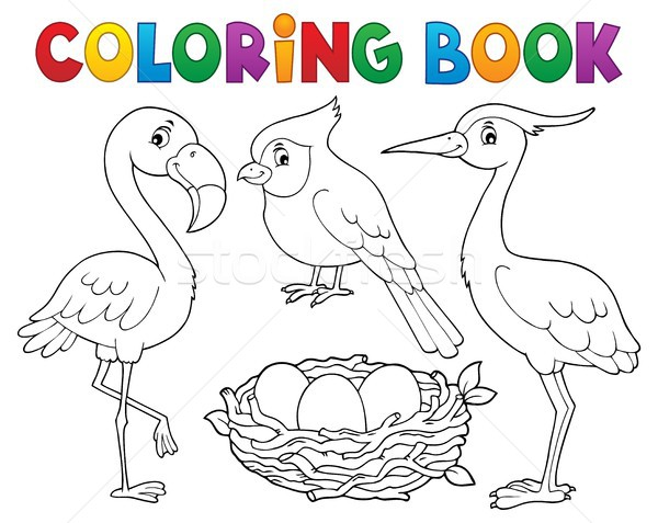 Livro para colorir pássaro tópico livro natureza arte Foto stock © clairev
