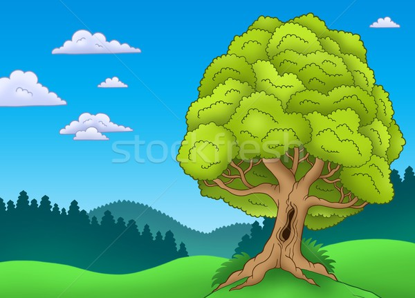 Big leafy tree in landscape Stock photo © clairev