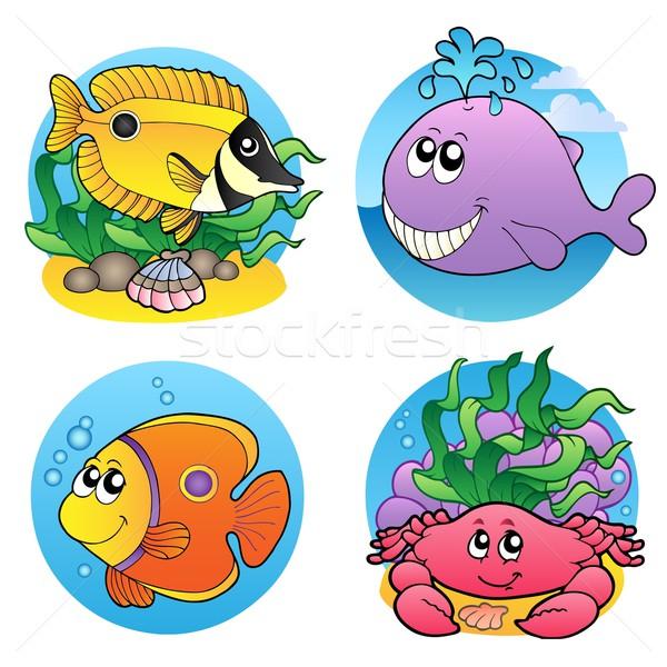 Különböző víz állatok halfajok boldog tenger Stock fotó © clairev