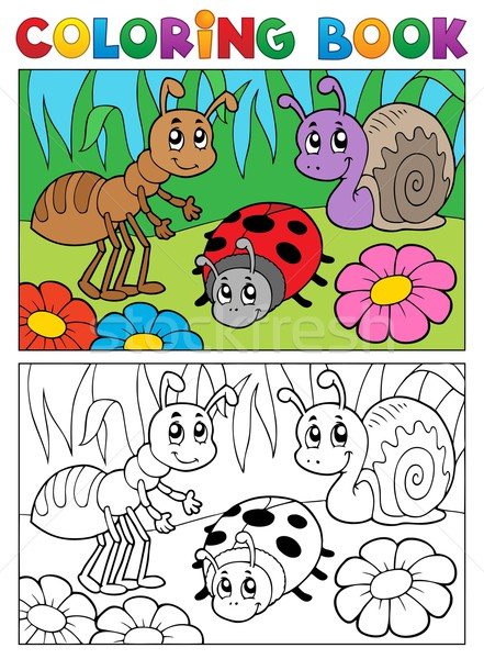 Coloring book bugs theme image 5 Stock photo © clairev