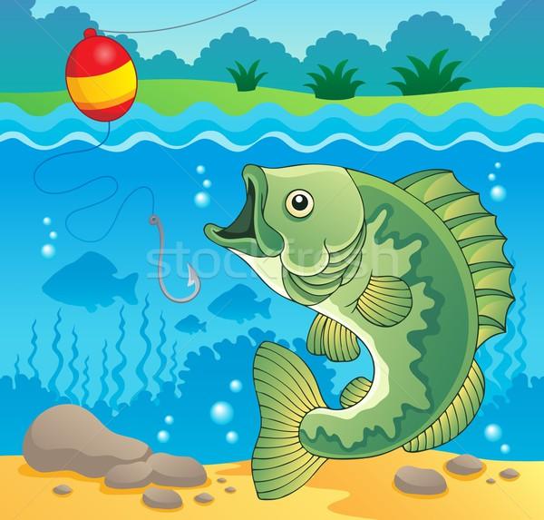 Słodkowodnych ryb obraz charakter rock kamień Zdjęcia stock © clairev