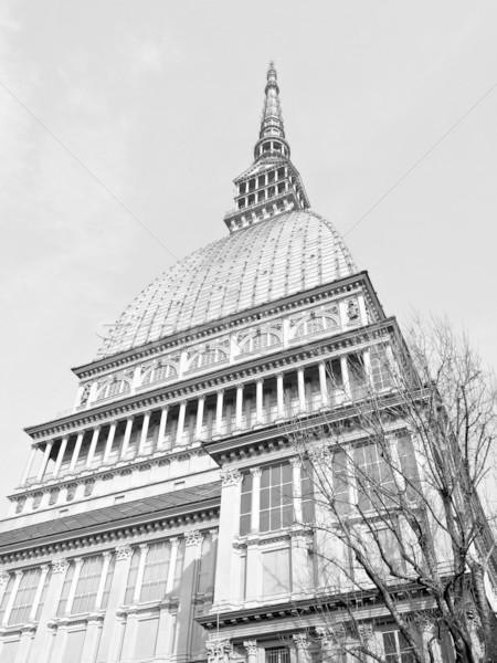 Mol torino oude stad Italië Stockfoto © claudiodivizia
