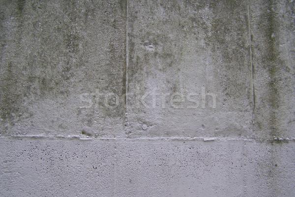 Concrete picture Stock photo © claudiodivizia