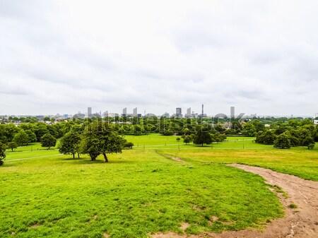 Prímula colina Londres parque inglaterra céu Foto stock © claudiodivizia