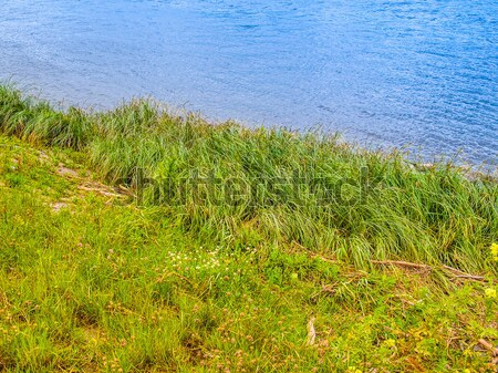 Elbe river Stock photo © claudiodivizia