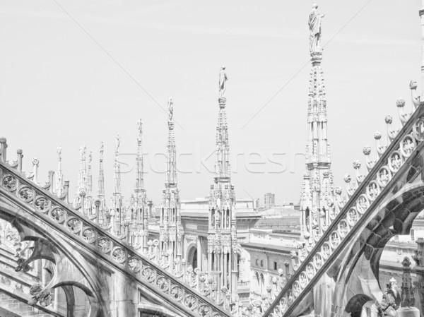 Milán gótico catedral iglesia Italia Foto stock © claudiodivizia