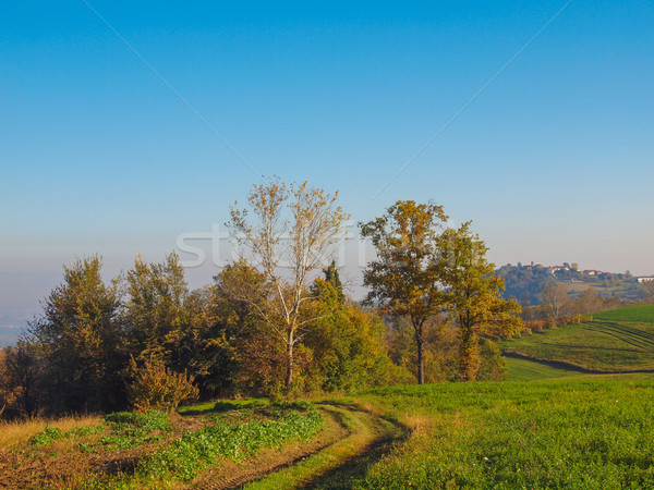 Stock photo: Marcorengo hill