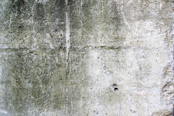 Concrètes brut texture Photo stock © claudiodivizia
