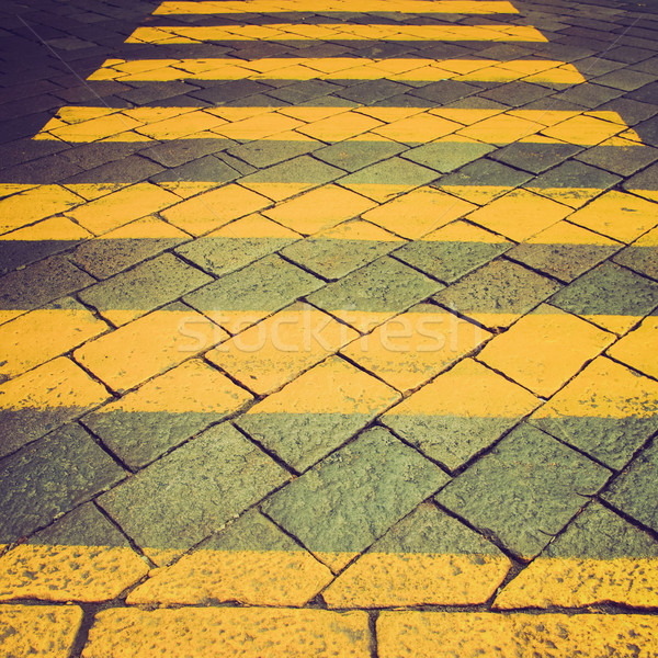 Retro néz zebra klasszikus néz részlet Stock fotó © claudiodivizia