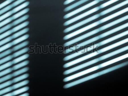 Window light and shadow Stock photo © claudiodivizia