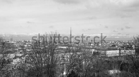 Londres panorama panorâmico ver linha do horizonte prímula Foto stock © claudiodivizia