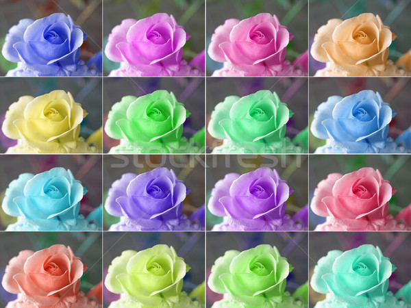 Popart roses Stock photo © claudiodivizia