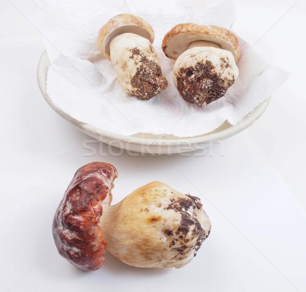 Cèpes cèpes penny chignon cuisine Photo stock © claudiodivizia