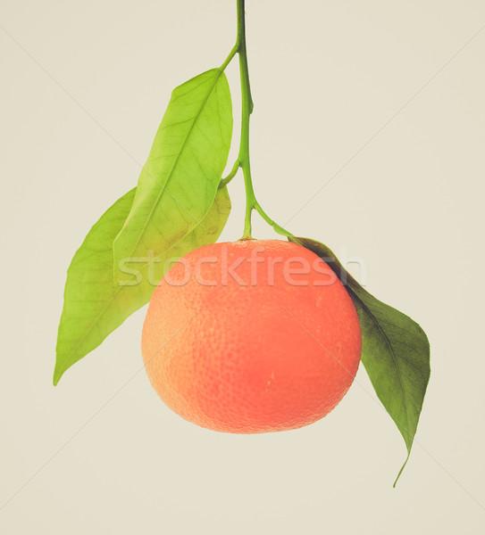Retro look Mandarin Stock photo © claudiodivizia