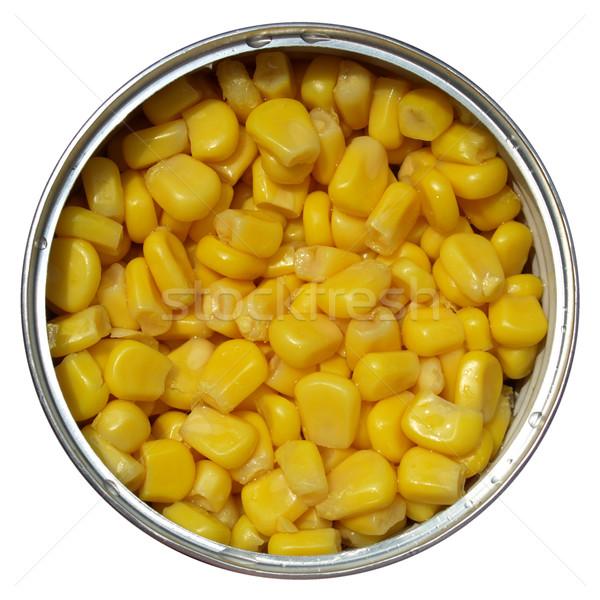 Maize corn Stock photo © claudiodivizia