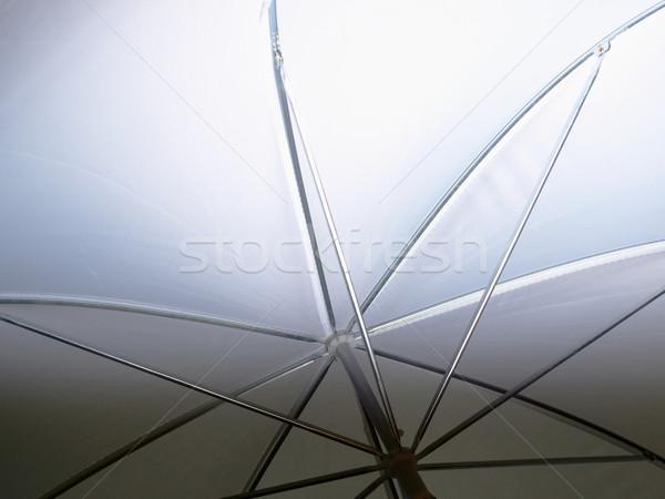 Umbrella Stock photo © claudiodivizia