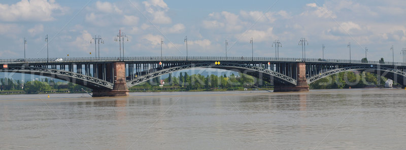 Rhine river in Mainz Stock photo © claudiodivizia