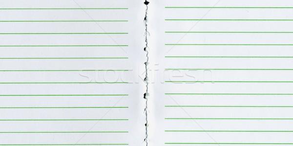 Blank notebook page Stock photo © claudiodivizia