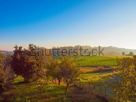Marcorengo hill Stock photo © claudiodivizia