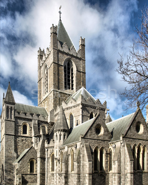 Christ Church Dublin Stock photo © claudiodivizia