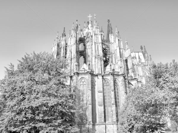Koeln Cathedral Stock photo © claudiodivizia