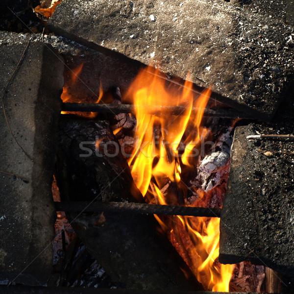 Barbecue Stock photo © claudiodivizia