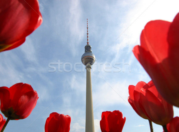 Tv torre Berlim fernsehturm televisão Alemanha Foto stock © claudiodivizia