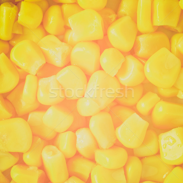 Retro look Maize corn Stock photo © claudiodivizia
