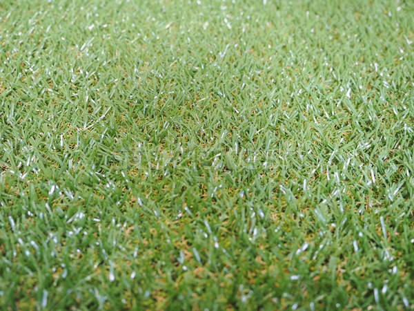 Herbe artificielle vert prairie utile nature fond Photo stock © claudiodivizia