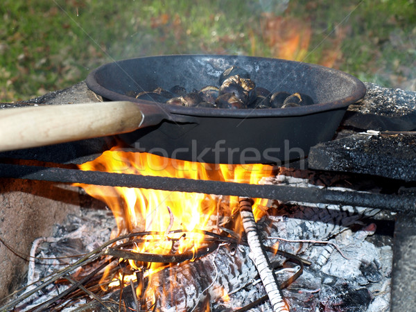 Barbecue BBQ láng étel Stock fotó © claudiodivizia