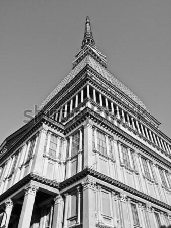 моль ретро архитектура Vintage Сток-фото © claudiodivizia