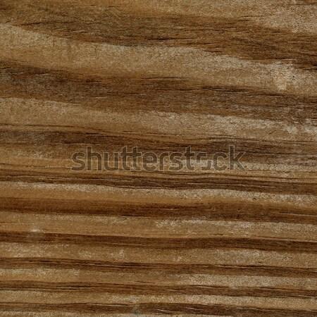 Holz Altholz Planke Bord nützlich Baum Stock foto © claudiodivizia