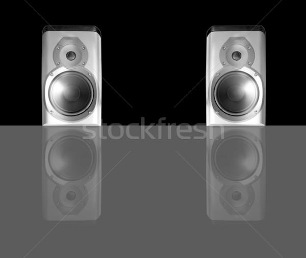 Speakers pair Stock photo © claudiodivizia